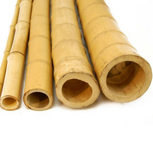 Vietnamese bamboo poles sticks wholesale price! Raw Bamboo Poles for Gardening and Decoration! Bamboo Pole 100% Natural