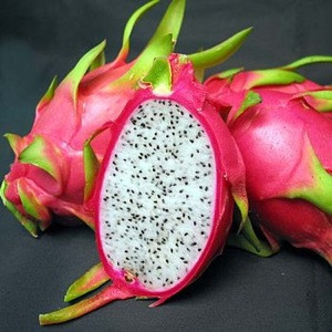 Dragon fruit quality for sale best price FROM THAILAND