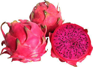HIGH QUALITY FRESH DRAGONFRUIT