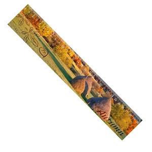 Plastic 3D lenticular printing scale ruler lenticular ruler for wholesale
