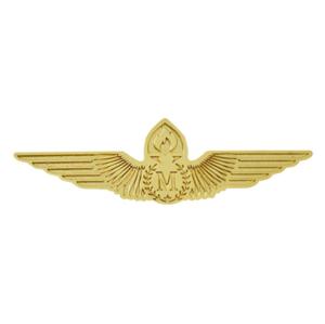 China custom design metal aircraft pilot wings  lapel pin badge for airline cap and uniform