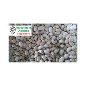 Soybean Baked Salty