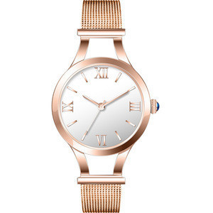 2017 Popular Product Fashion watch Womens Silver Mesh Band Round Dial Wrist Watch