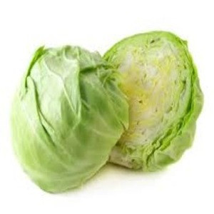 Fresh Green Cabbage available for sale