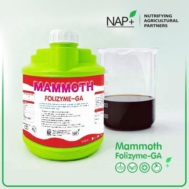 High performance Phosphate and Potassium liquid fertilizer: Mammoth Folizyme-GA