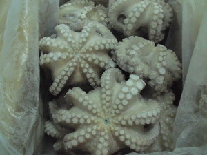 OCTOPUS FLOWER IQF