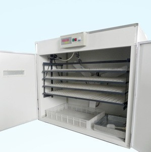 Poultry equipments Chicken,Bird,Ostrich,Duck,Turkey,Quail,Goose usage automatic egg incubator price
