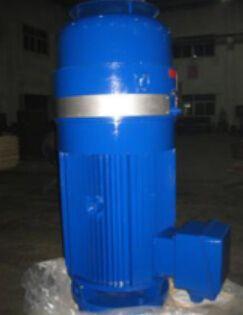 NEMA IEC standard deep well pump vhs motor