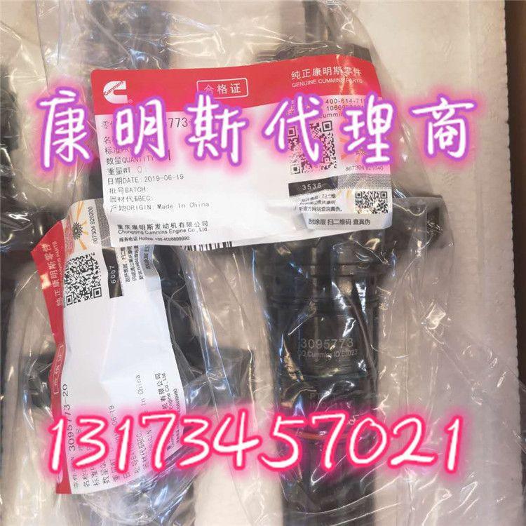 Hot:cummins KTA19injector 3095773 nice price