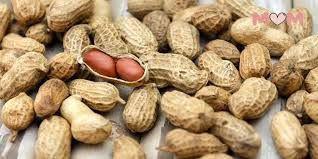 Peanuts (Groundnuts)