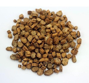 Cut and Sifted Natural Raw Dried or fresh Burdock Root
