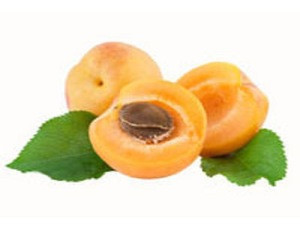 Extra Quality Apricot Affordable Price
