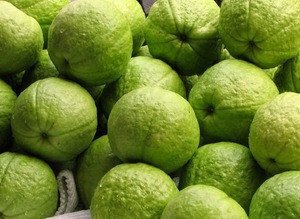 Fresh Guava - high quality for sale