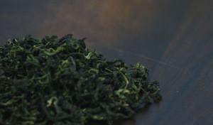 Unique Flavor Organic Coastal Hogfennel leaf Tea in Bulk