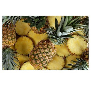 Fresh pineapples Wholesale supplier 100% High quality cheap rate Bulk Quantity