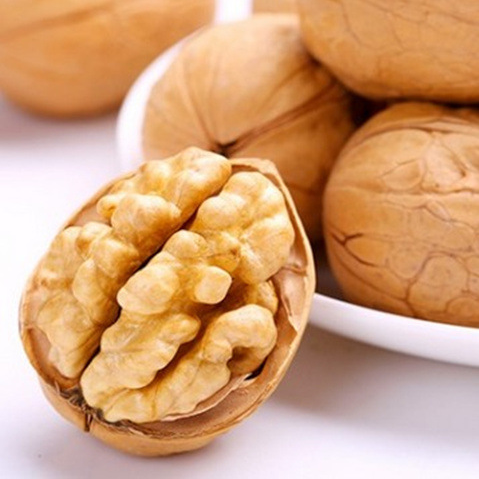Chinese Brand- Xinjiang Walnuts S-801