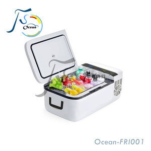 Durable Vehicle Car Fridge 15L 20L Portable Mini Refrigerators Car Freezers 12V 24V Fridge DC Compressor Refrigeration FRI001