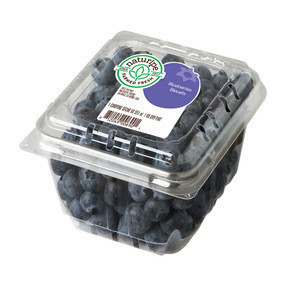 Blueberries Conventional (Pints) - New harvested