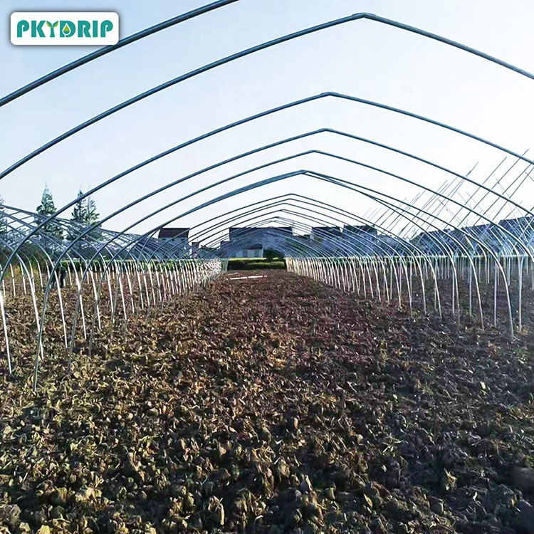 Design custom agricultural greenhouses For various vegetables