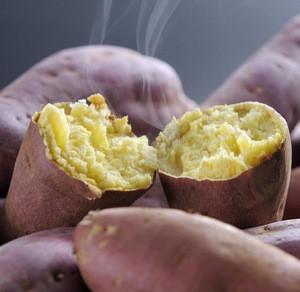 Japanese Sweet Fresh Potato For Sale