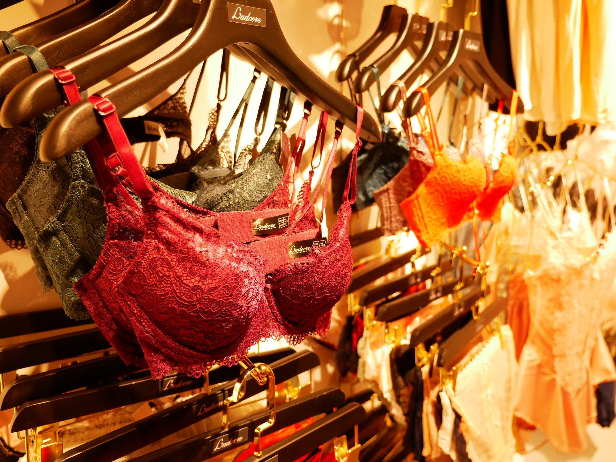 Women's Lingerie, Underwear, Panties, Bra Set, Swimwear, Invisible bra, Pajamas and Sleepwear Wholesale From Taiwan