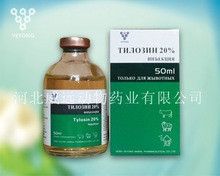 Veterinary medicine factory supplier tylosin 20% Injection for cattle sheep