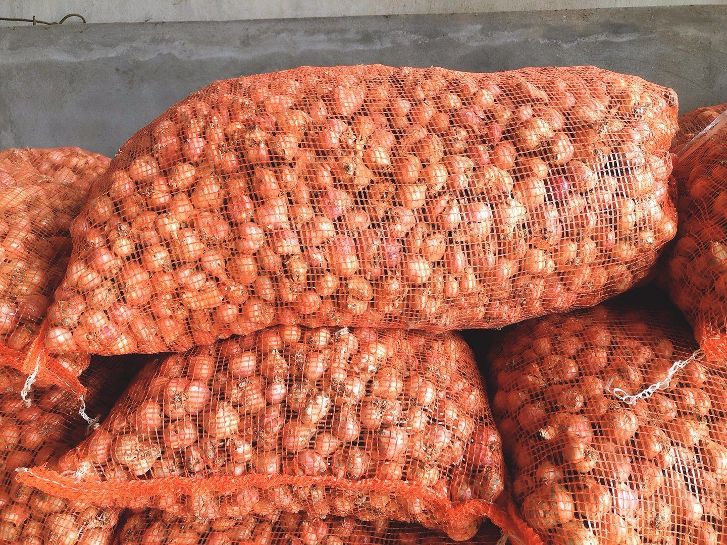 - Wholesale for fresh onion / white onion - Big Sale for small onions