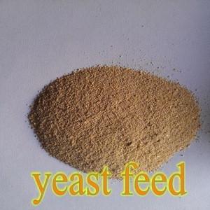 Corn Grain, Wheat Bran, DDGS Make Yeast 55% For Animal Feed