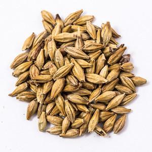 New Crop Barley for malt / Barley Animal feed For Sale