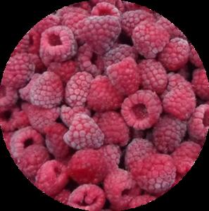 Top Shelf Delicious Bulk IQF Fruit Frozen Whole Raspberry for jam yogurt juice