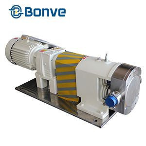 Stainless steel rotary lobe pump