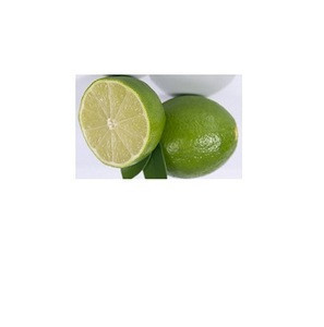 Fresh Green Lime Seedless and SEEDLESS LIME,PERSIAN LIME from South Africa