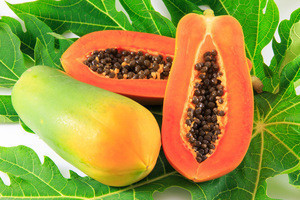 FRESH PAPAYA /DRIED PAPAYA/PAPAYA RED LADY  WHATSAPP 0084 845639639