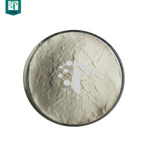 Pharmaceutical Raw Materials bovine pancreatin/pancreatin enzyme powder