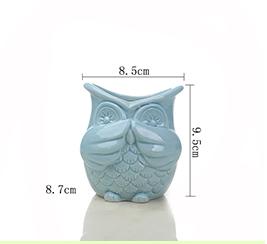 Succulent Ceramic Pot