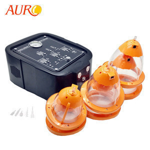 Breast and Buttock Lift Vacuum Cupping Therapy Machine Au-7002 For Beauty Breast Care Products
