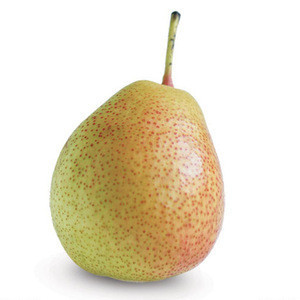 Fresh Pears from South Africa with good price.
