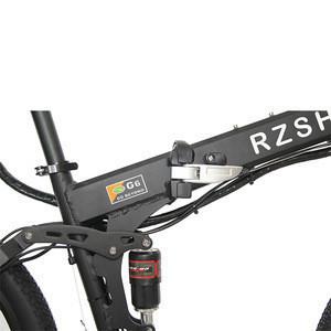 Portable folding electric bike 250w ebike foldable 250W 300W 350W electric folding bike