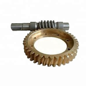 ISO9001 Certificated Factory OEM High Precision Worm Gear