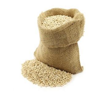 Wheat Flour High Quality Product of USA/Barley Flour