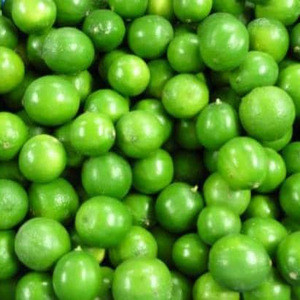 NATURAL FRESH LIME FRUIT WITH HIGH QUALITY & HIGH VALUE FROM VIETNAM