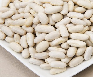 Wholesales top quality White Beans / White Kidney Beans for sale
