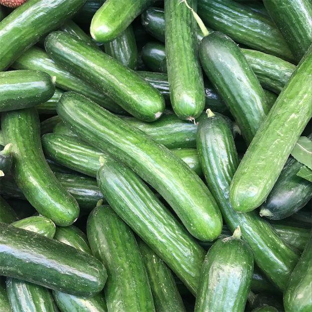 Fresh and healthy cucumber Fresh Vegetable