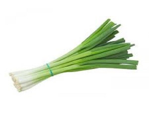 FRESH SCALLIONS / FRESH AND DRIED FOR SALE
