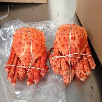 Fresh/Frozen/Live Red King Crabs, Soft Shell Crabs, Blue Swimming Crabs & Snow Crabs for Sale
