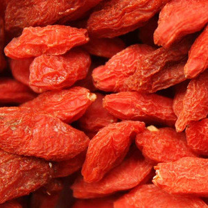 European best grade Fresh 100% Natural Dried Goji berry/Dried Wolfberry/ Dried Goji berries