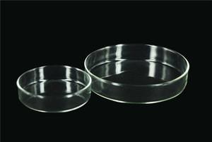 High quality glass/plastic petri dish 100mm petri dish container