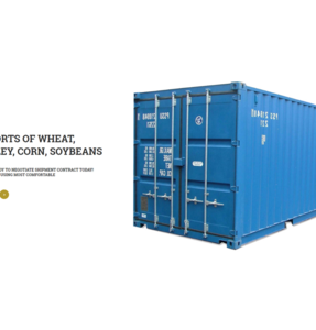 Quality African Golden Soft Wheat with High Gluten - Feed Wheat Grain in Bulk - Buy at Best Price
