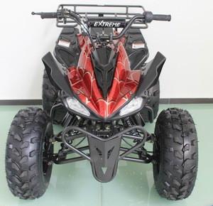 Raptor 125cc atv