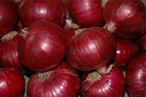 Onion Onion Wholesale Fresh Onion Red Onion Export Price